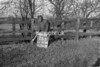 SJ918626B, Ordnance Survey Revision Point photograph in Greater Manchester
