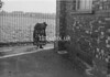SJ918724K, Ordnance Survey Revision Point photograph in Greater Manchester