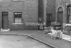 SJ918763A, Ordnance Survey Revision Point photograph in Greater Manchester