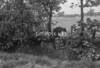 SJ918710B, Ordnance Survey Revision Point photograph in Greater Manchester