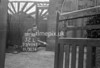 SJ909532L, Ordnance Survey Revision Point photograph in Greater Manchester