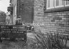 SJ889561A, Ordnance Survey Revision Point photograph in Greater Manchester