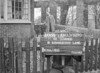 SJ829066B, Ordnance Survey Revision Point photograph in Greater Manchester
