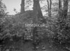 SJ838899X, Ordnance Survey Revision Point photograph in Greater Manchester