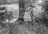 SJ838837B, Ordnance Survey Revision Point photograph in Greater Manchester