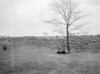 SJ839064W, Ordnance Survey Revision Point photograph in Greater Manchester
