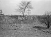 SJ839071W, Ordnance Survey Revision Point photograph in Greater Manchester