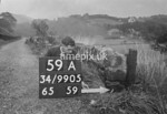 SD990559A, Man marking Ordnance Survey minor control revision point with an arrow in 1950s