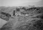 SD980895B, Man marking Ordnance Survey minor control revision point with an arrow in 1950s