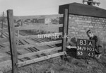 SD990583A, Man marking Ordnance Survey minor control revision point with an arrow in 1950s