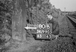 SD990580B, Man marking Ordnance Survey minor control revision point with an arrow in 1950s