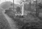SD990676B, Man marking Ordnance Survey minor control revision point with an arrow in 1950s
