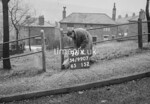 SD990796K, Man marking Ordnance Survey minor control revision point with an arrow in 1950s