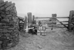 SD980528B, Man marking Ordnance Survey minor control revision point with an arrow in 1950s