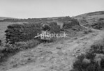 SD990504L1, Man marking Ordnance Survey minor control revision point with an arrow in 1950s