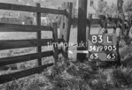 SD990583L, Man marking Ordnance Survey minor control revision point with an arrow in 1950s