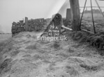 SD980679A, Man marking Ordnance Survey minor control revision point with an arrow in 1950s
