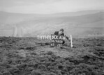 SD980880A, Man marking Ordnance Survey minor control revision point with an arrow in 1950s