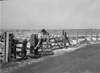 SD840992A, Ordnance Survey Revision Point photograph in Greater Manchester
