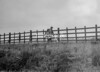 SD880828A, Ordnance Survey Revision Point photograph in Greater Manchester