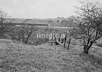 SD950301A, Man marking Ordnance Survey minor control revision point with an arrow in 1950s