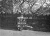 SD990437A, Man marking Ordnance Survey minor control revision point with an arrow in 1950s