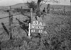 SD830683B, Ordnance Survey Revision Point photograph in Greater Manchester