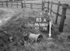 SD840685A, Ordnance Survey Revision Point photograph in Greater Manchester