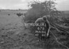 SD830667B, Ordnance Survey Revision Point photograph in Greater Manchester