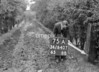 SD840775A, Ordnance Survey Revision Point photograph in Greater Manchester