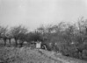 SD840661A, Ordnance Survey Revision Point photograph in Greater Manchester