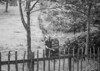 SD931781B, Ordnance Survey Revision Point photograph in Greater Manchester