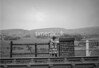 SD931506B, Ordnance Survey Revision Point photograph in Greater Manchester