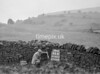SD921646B, Ordnance Survey Revision Point photograph in Greater Manchester