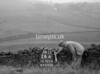 SD921626A, Ordnance Survey Revision Point photograph in Greater Manchester
