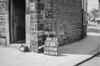 SD931673B, Ordnance Survey Revision Point photograph in Greater Manchester