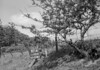SD921797A, Ordnance Survey Revision Point photograph in Greater Manchester