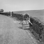 SD960069A, Man marking Ordnance Survey minor control revision point with an arrow in 1950s