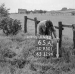 SD950165A, Man marking Ordnance Survey minor control revision point with an arrow in 1950s
