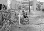 SJ979939A, Ordnance Survey Revision Point photograph in Greater Manchester