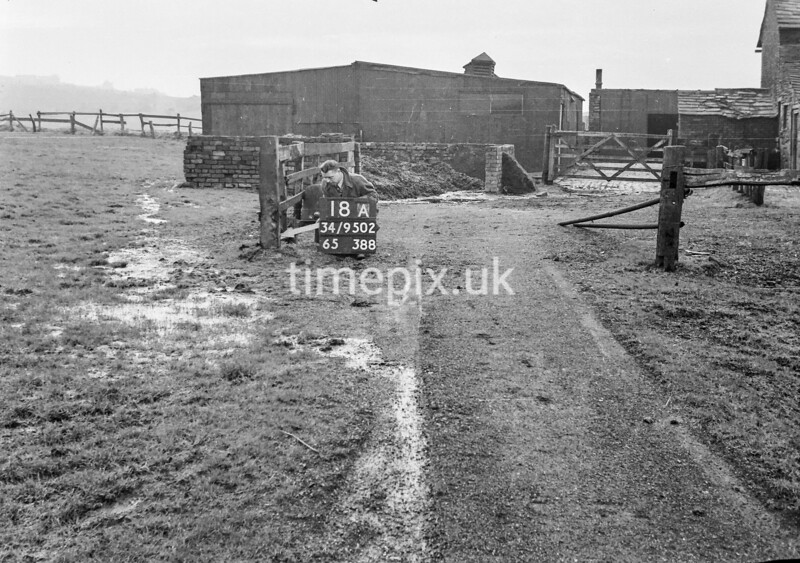 SD950218A, Man marking Ordnance Survey minor control revision point with an arrow in 1950s