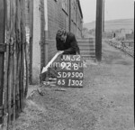 SD950092B, Man marking Ordnance Survey minor control revision point with an arrow in 1950s