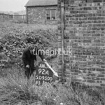 SD950092A, Man marking Ordnance Survey minor control revision point with an arrow in 1950s