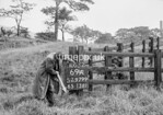 SJ979969A, Ordnance Survey Revision Point photograph in Greater Manchester