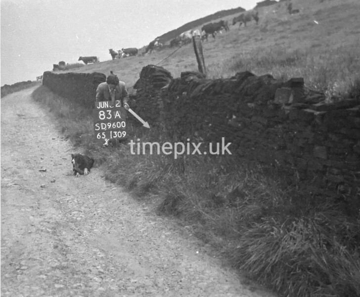 SD960083A, Man marking Ordnance Survey minor control revision point with an arrow in 1950s