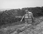 SD960194B, Man marking Ordnance Survey minor control revision point with an arrow in 1950s