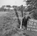 SD950152B, Man marking Ordnance Survey minor control revision point with an arrow in 1950s