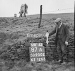 SD950287A, Man marking Ordnance Survey minor control revision point with an arrow in 1950s
