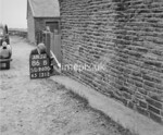 SD960086B, Man marking Ordnance Survey minor control revision point with an arrow in 1950s
