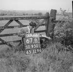 SD950167B, Man marking Ordnance Survey minor control revision point with an arrow in 1950s